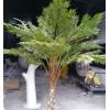 新款白色桫椤树 人造玻璃钢仿真桫椤树 定做假树热带景观树沙罗树