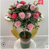 茶花盆栽带花苞四季树苗山茶花苗庭院室内好养植物多色浓香型花卉